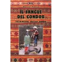 Il sangue del condor. Sciamani delle Ande