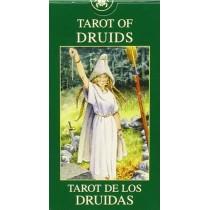 Tarocchi dei Druidi