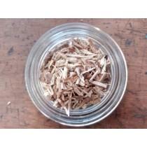 Cicoria radice