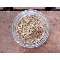Centaurea minore bio
