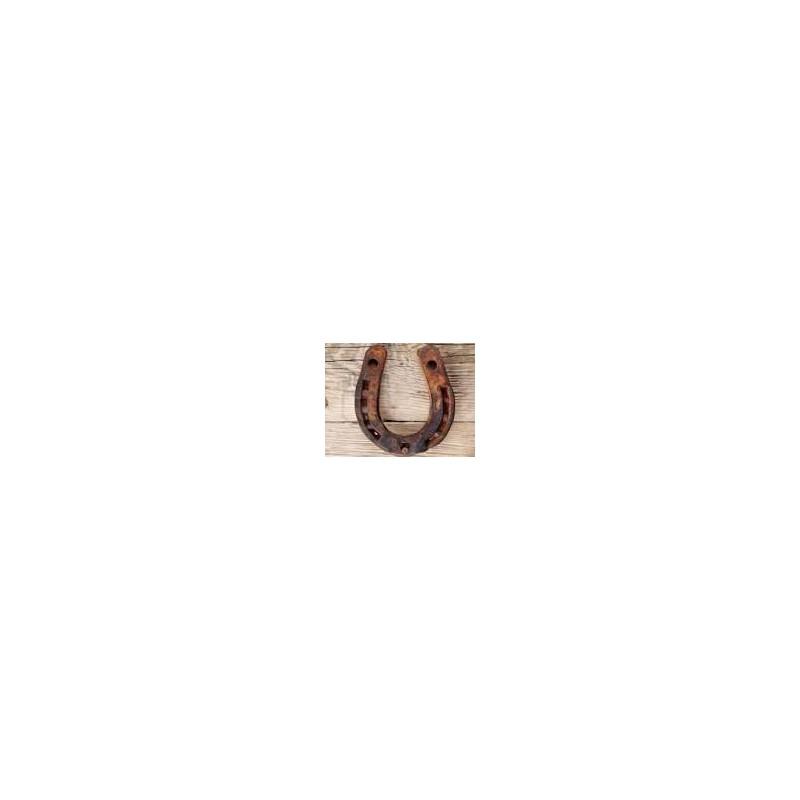 Schema del ferro di cavallo